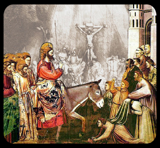 The Center for Liturgy Sunday Web Site | The Center for